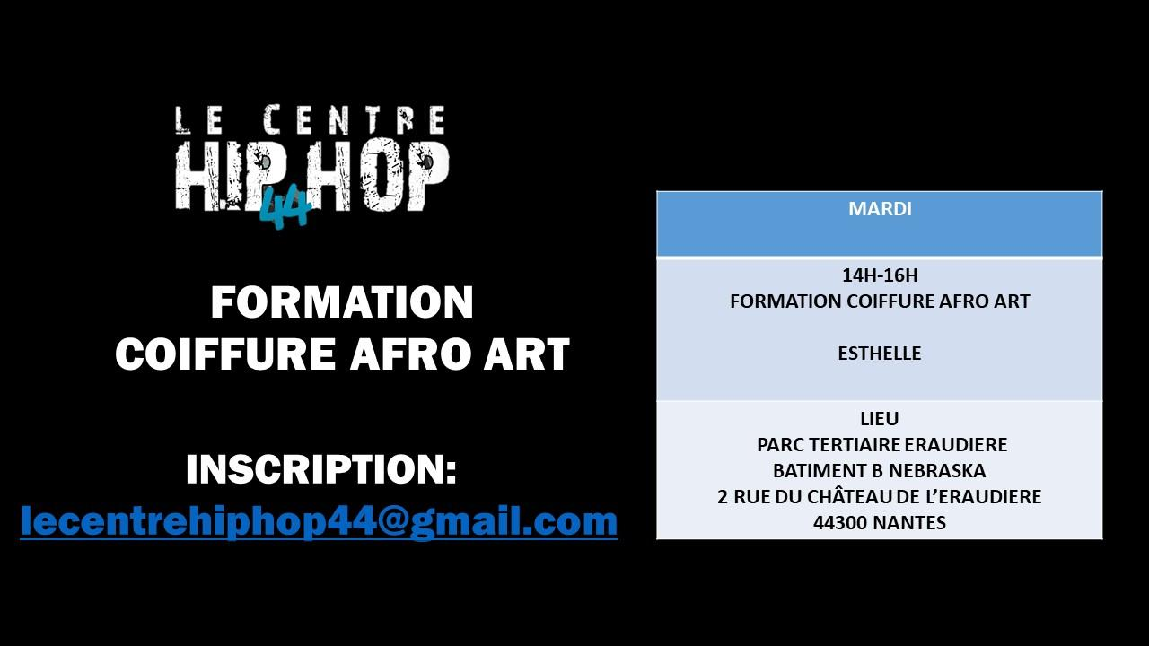 FORMATION COIFFURE AFRO ART